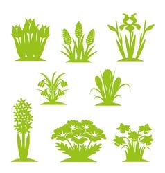 flowers green vector image