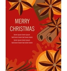 Christmas background with orange and spices Xmas vector image vector image