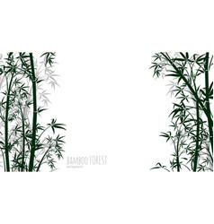 Bamboo forest background asian plants silhouettes vector