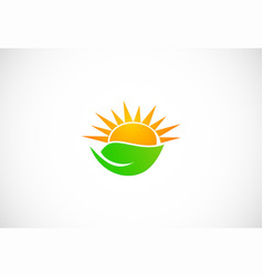 Organic sun shine green leaf logo vector