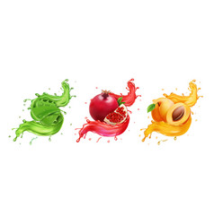 pomegranate apricot aloe splash juice vector image