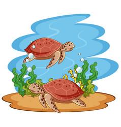 Scene with sea turtles in sea vector