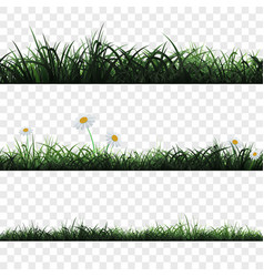 seamless pattern of grass vector image