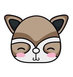 Shy raccoon head wild animal vector
