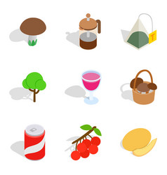 Vegetarian meal icons set isometric style vector
