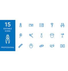 15 professional icons vector
