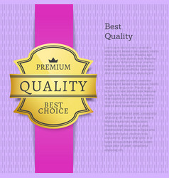 best quality premium super choice purple poster vector image