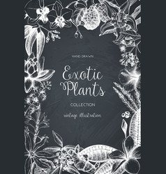Design with exotic plants sketch vector