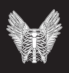 Hand drawn human ribs with wings isolated vector
