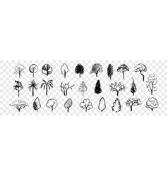hand drawn trees doodle set collection vector image