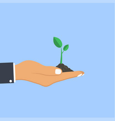 human hand palm holds plant planting sapling vector image
