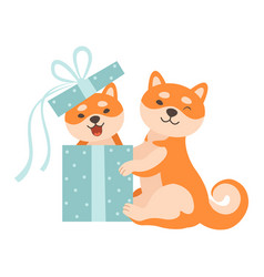 Two cute shiba inu dogs one dog sitting in gift vector