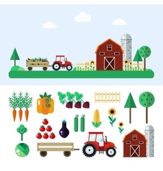 Farm with tractor vegetables barn trees vector image vector image