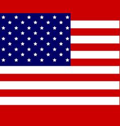 usa flag of american vector image