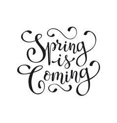 spring time wording vector image