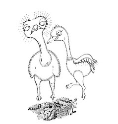black and white cute cartoon ostrich coloring vector image