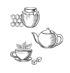 Cup of tea honey jar and teapot sketches vector
