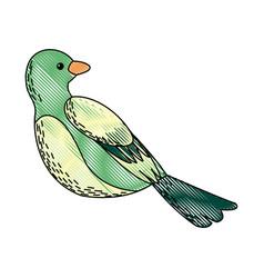 Cute cartoon bird animal natural spring image vector