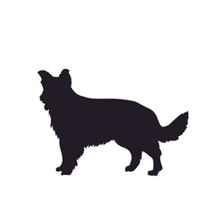 dog stands silhouette vector image