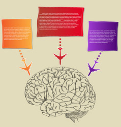 human brain with colorful airplane vector image