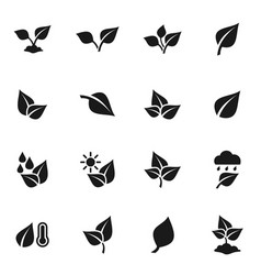 Leaf icon6 vector
