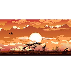 Plane flies at dusk over african savanna vector