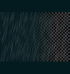semitransparent rain effect vector image