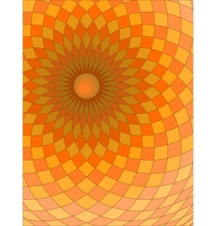 spirals and checks vector image