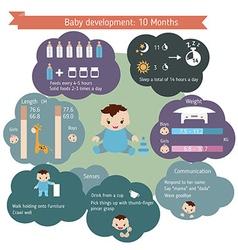 Child development infographics vector image vector image
