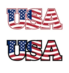 USA Text Flag USA United States of America Flag in vector image