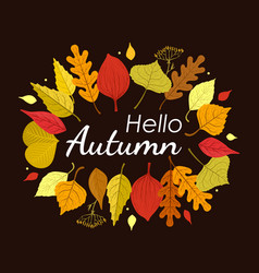 hello autumn banner template with colorful leaves vector image