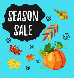 season sale banner with fall leaves pumpkin and vector image