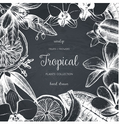 design with exotic plants sketch vector image