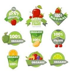 Set of organic natural fruits labels vector image