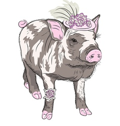 fashion Pot-bellied pig in beautiful hat vector image vector image