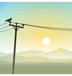 Bird on Telephone Lines vector