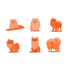 friendly brown fluffy spitz dogs in different vector image