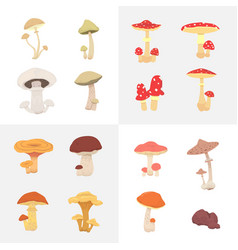 Set different mushrooms isolated vector