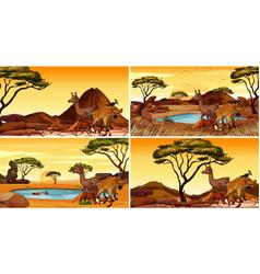 set scenes with animals in desert vector image