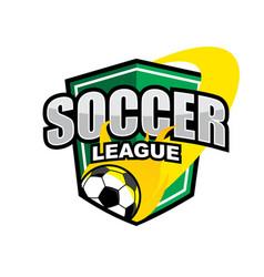 soccer league logo vector image