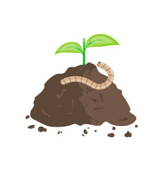 earthworm and pile of ground vector image vector image