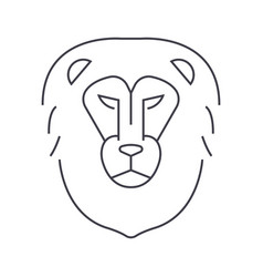lion head line icon sign on vector image
