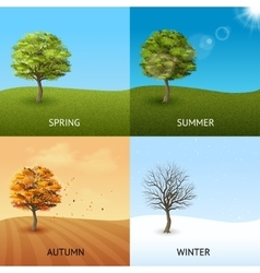 Tree concept set vector image