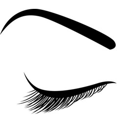 Beautiful closed eye with long eyelashes icon vector