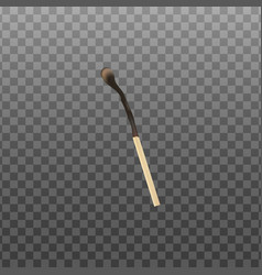 Burnt and charred in fire match realistic vector