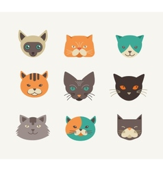 Collection of cat icons and vector image