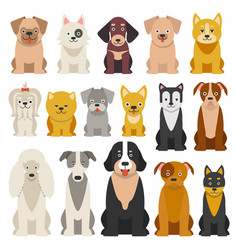 Different funny dogs in cartoon style isolated vector