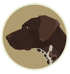 dog collection german shorthaired pointer avatar vector image