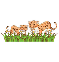 isolated picture cheetahs in garden vector image