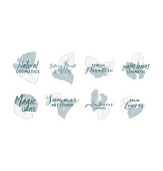 palm leaves logo design collection vector image